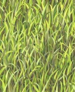 #89950 GRASS GRASS COL. 101 GREEN